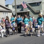 Northern Veterinary Associates Group with Dogs